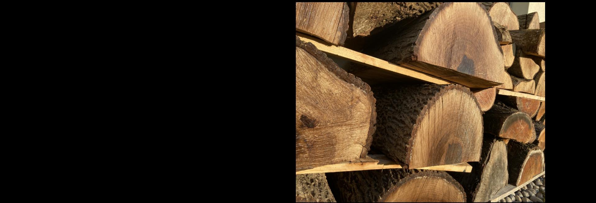 Rohstoff Holz Rohlinge