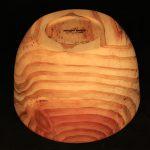 Schale Mammutbaum